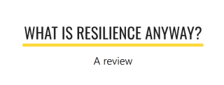 Image of Case in Point | What is Resilience anyway?