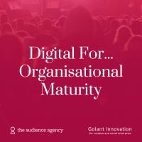 Photo of DigitalFor...Organisational Maturity