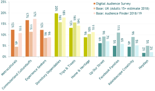 Image of Digital Audience Survey | Findings