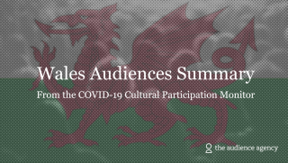 Image of Wales | Cultural Participation Monitor